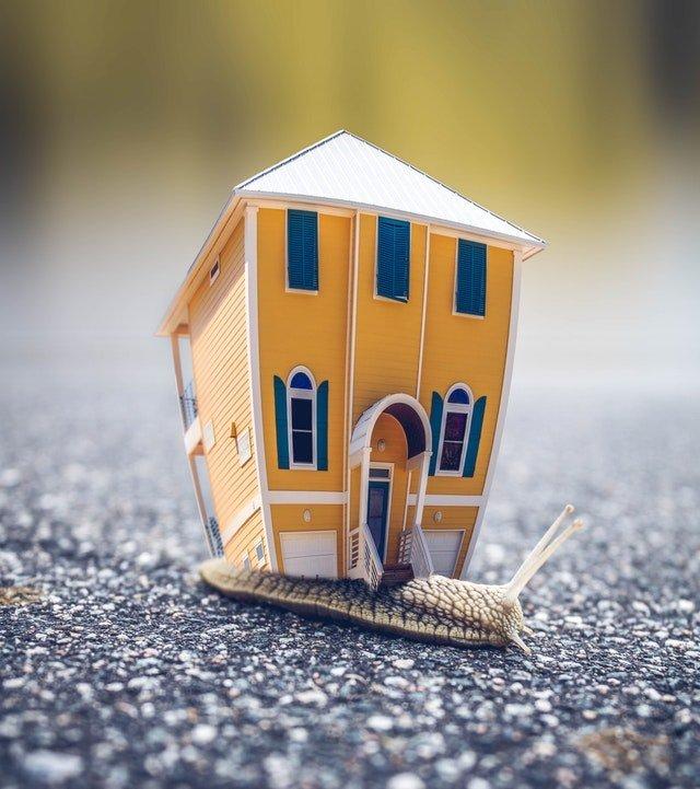 Low Risk Landlord